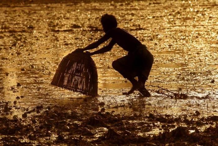 WIN-Photocomp-2012_Mukhopadhyay3